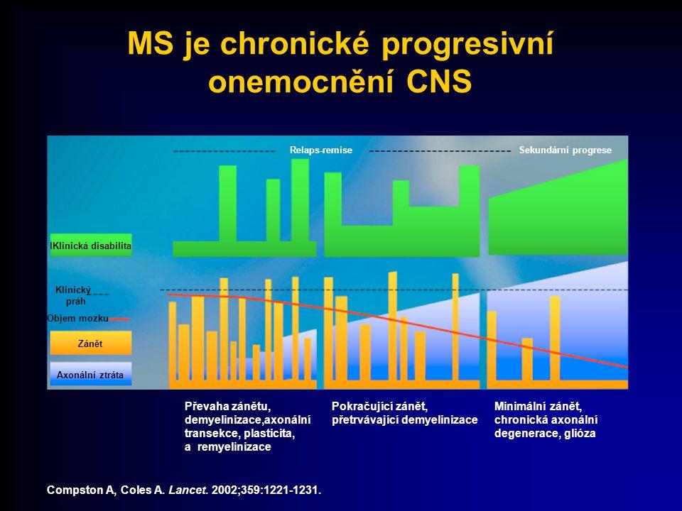 periferie Demyelinizace a axonální ztráta Hemato- encefalic ká bariera transmigrace CNS T T autoreaktivn í T - lymfocyty Signál neboli spouštěč aktivace, diferenciace, klonální expanze T T T T Lokální reaktivace T T APC produkce cytokinů aktivace makrofágů protilátky B MM NO IFN-  TNF-  Patogeneze MS Prof.