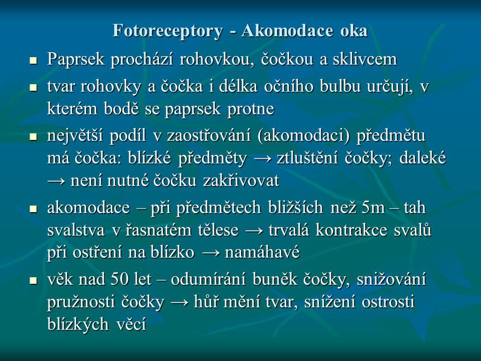 Fotoreceptory - Akomodace oka Paprsek prochází rohovkou, čočkou a sklivcem Paprsek prochází rohovkou, čočkou a sklivcem tvar rohovky a čočka i délka o