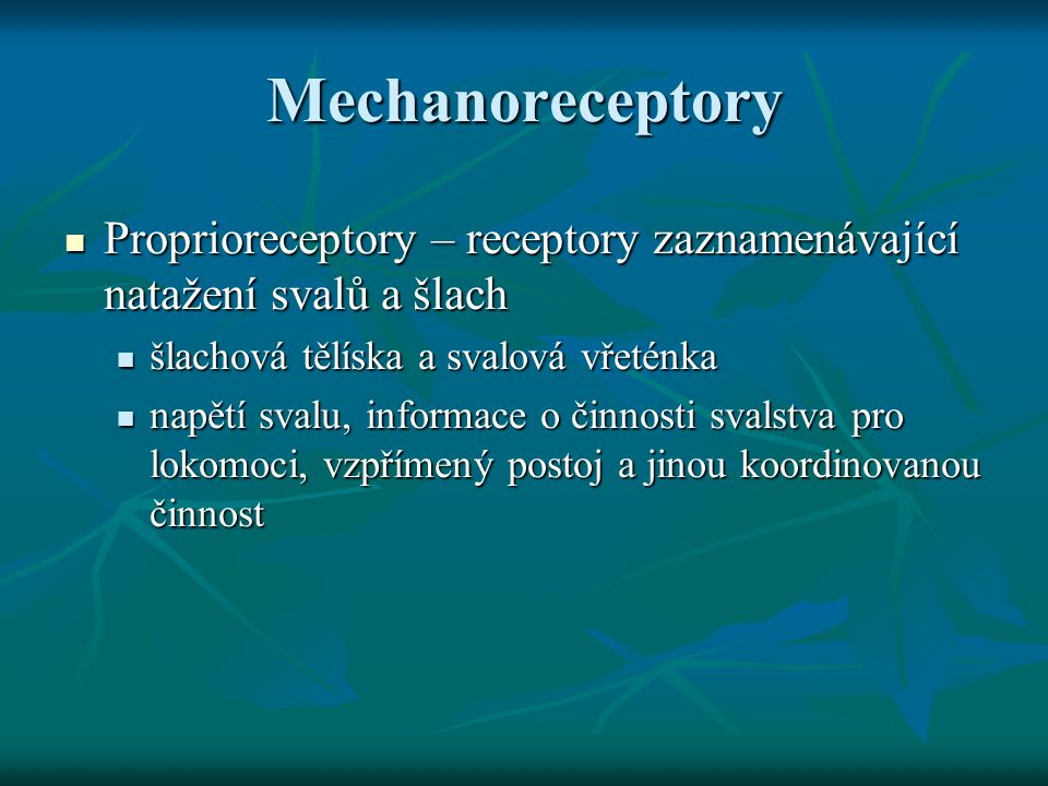 Mechanoreceptory Proprioreceptory – receptory zaznamenávající natažení svalů a šlach Proprioreceptory – receptory zaznamenávající natažení svalů a šla