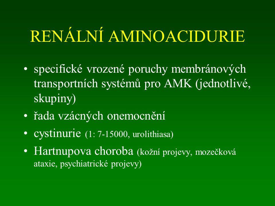 RENÁLNÍ AMINOACIDURIE specifické vrozené poruchy membránových transportních systémů pro AMK (jednotlivé, skupiny) řada vzácných onemocnění cystinurie (1: 7-15000, urolithiasa) Hartnupova choroba (kožní projevy, mozečková ataxie, psychiatrické projevy)