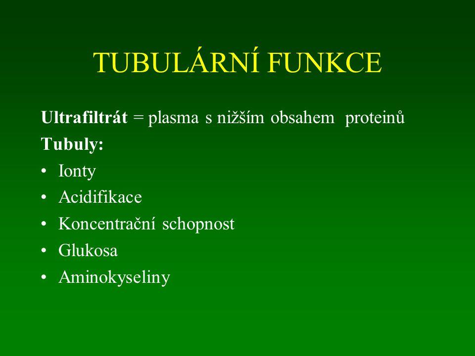 TUBULÁRNÍ FUNKCE Ultrafiltrát = plasma s nižším obsahem proteinů Tubuly: Ionty Acidifikace Koncentrační schopnost Glukosa Aminokyseliny