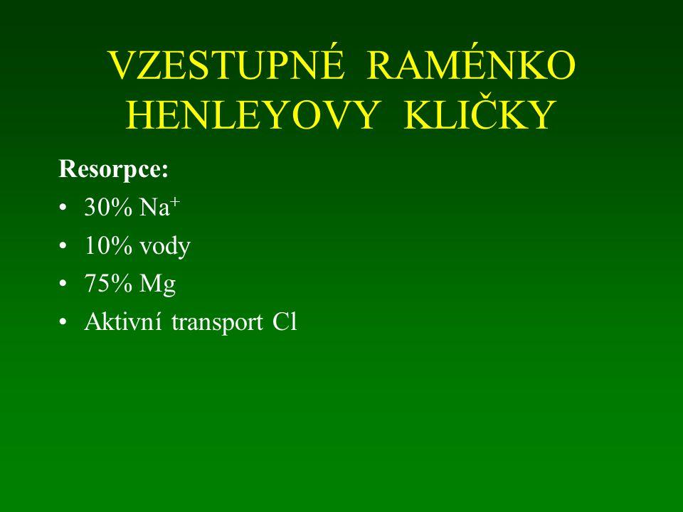 VZESTUPNÉ RAMÉNKO HENLEYOVY KLIČKY Resorpce: 30% Na + 10% vody 75% Mg Aktivní transport Cl