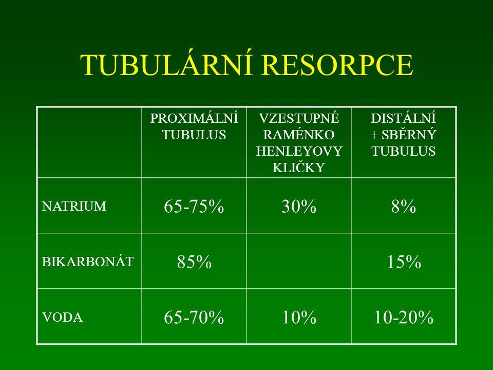 TUBULÁRNÍ RESORPCE PROXIMÁLNÍ TUBULUS VZESTUPNÉ RAMÉNKO HENLEYOVY KLIČKY DISTÁLNÍ + SBĚRNÝ TUBULUS NATRIUM 65-75%30%8% BIKARBONÁT 85%15% VODA 65-70%10%10-20%