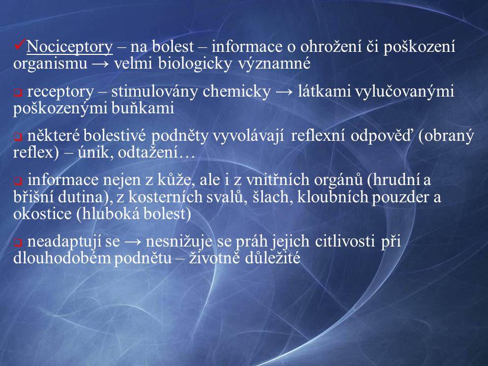 Nociceptory – na bolest – informace o ohrožení či poškození organismu → velmi biologicky významné  receptory – stimulovány chemicky → látkami vylučov