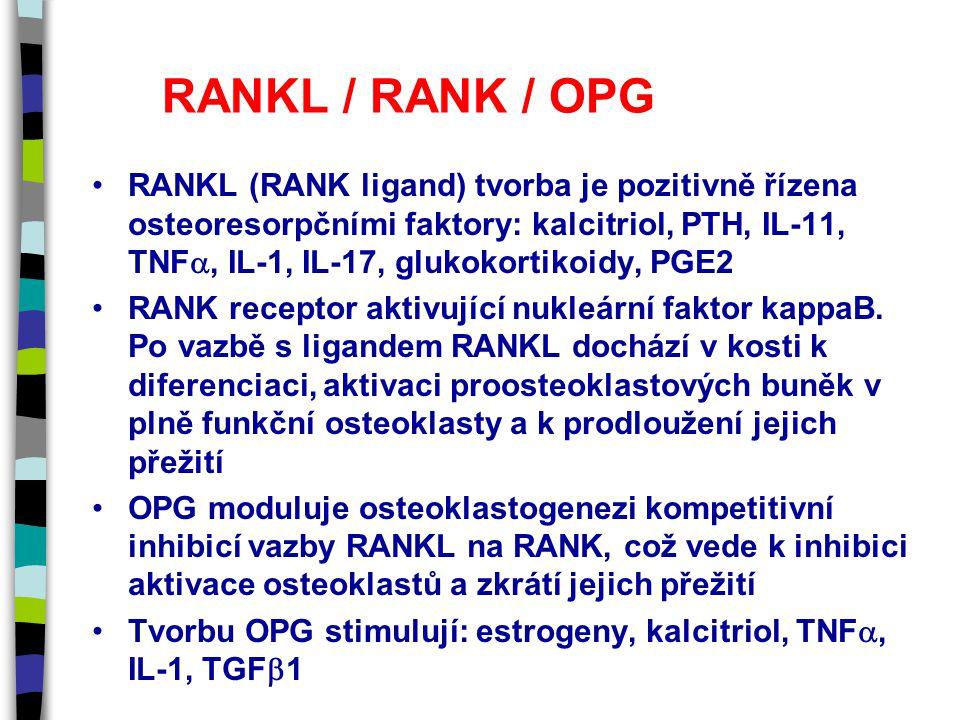 RANKL / RANK / OPG RANKL (RANK ligand) tvorba je pozitivně řízena osteoresorpčními faktory: kalcitriol, PTH, IL-11, TNF , IL-1, IL-17, glukokortikoidy, PGE2 RANK receptor aktivující nukleární faktor kappaB.