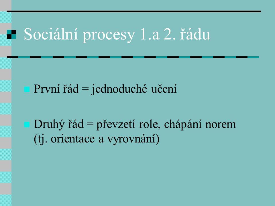 Sociální procesy 1.a 2. řádu První řád = jednoduché učení Druhý řád = převzetí role, chápání norem (tj. orientace a vyrovnání)