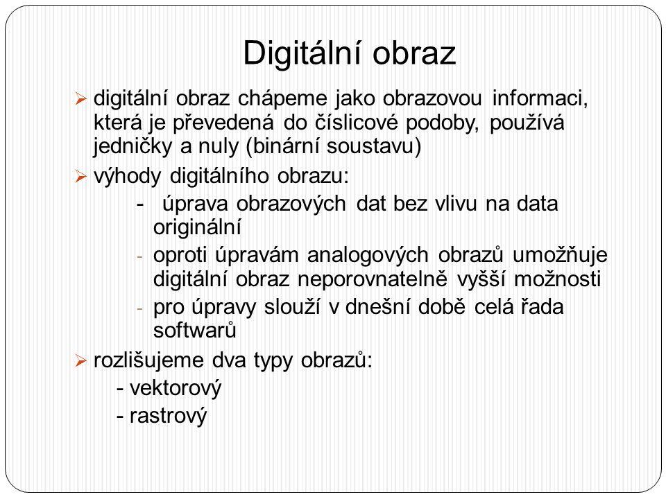 Digitální obraz  digitální obraz chápeme jako obrazovou informaci, která je převedená do číslicové podoby, používá jedničky a nuly (binární soustavu)