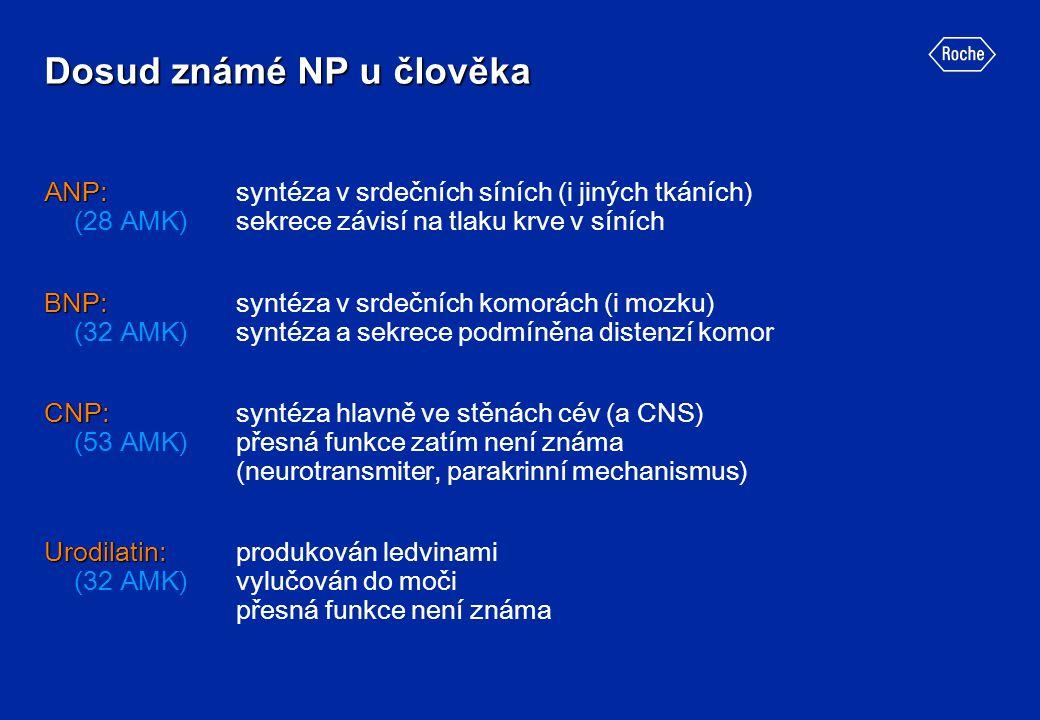 Dosud známé NP u člověka ANP: ANP: syntéza v srdečních síních (i jiných tkáních) (28 AMK)sekrece závisí na tlaku krve v síních BNP: BNP:syntéza v srde
