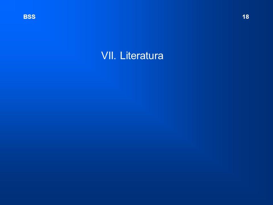 VII. Literatura BSS 18