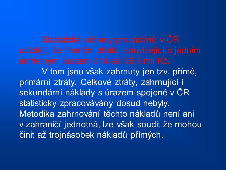 Statistické odhady prováděné v ČR uvádějí, že finanční ztráta, související s jedním smrtelným úrazem činí asi 36,3 mil Kč. V tom jsou však zahrnuty je