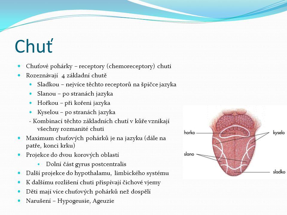 Chuť Chuťové pohárky – receptory (chemoreceptory) chuti Rozeznávají 4 základní chutě Sladkou – nejvíce těchto receptorů na špičce jazyka Slanou – po s