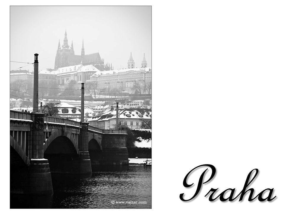 Kampa z Karlova mostu