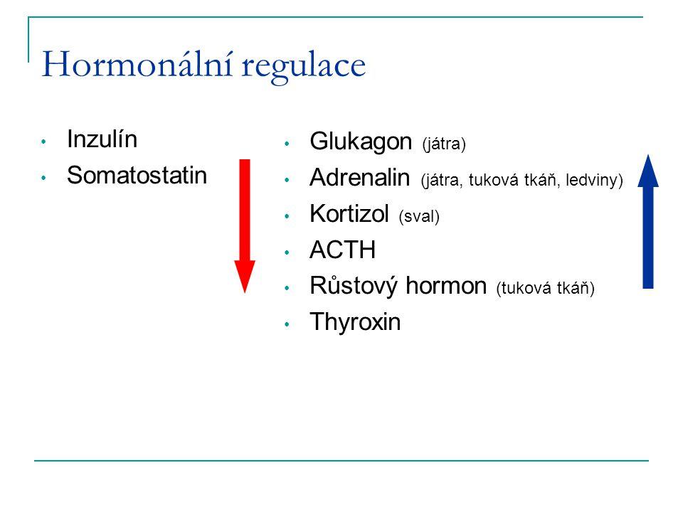 Hormonální regulace Inzulín Somatostatin Glukagon (játra) Adrenalin (játra, tuková tkáň, ledviny) Kortizol (sval) ACTH Růstový hormon (tuková tkáň) Th