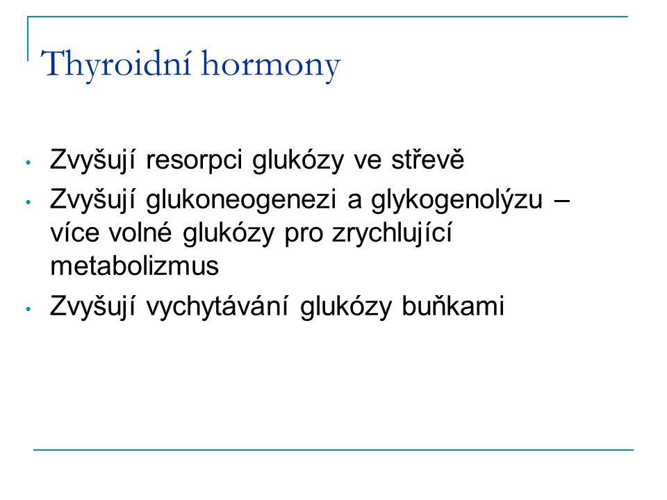 Thyroidní hormony Zvyšují resorpci glukózy ve střevě Zvyšují glukoneogenezi a glykogenolýzu – více volné glukózy pro zrychlující metabolizmus Zvyšují