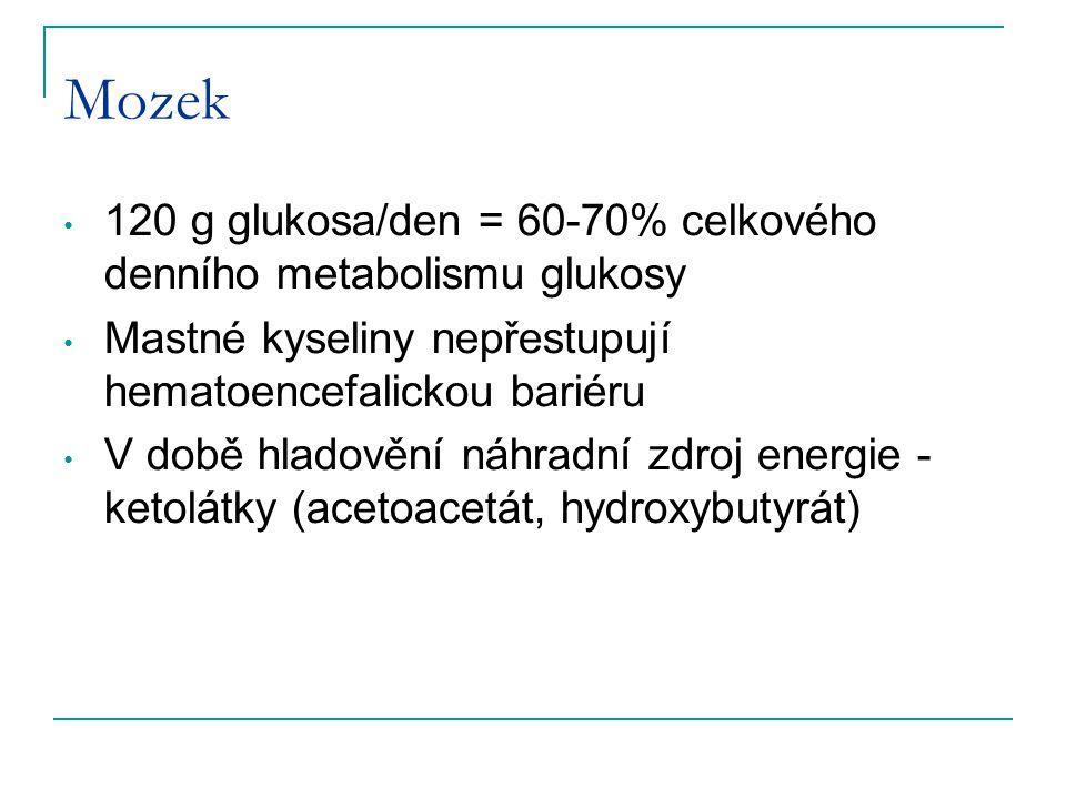 Mozek 120 g glukosa/den = 60-70% celkového denního metabolismu glukosy Mastné kyseliny nepřestupují hematoencefalickou bariéru V době hladovění náhrad