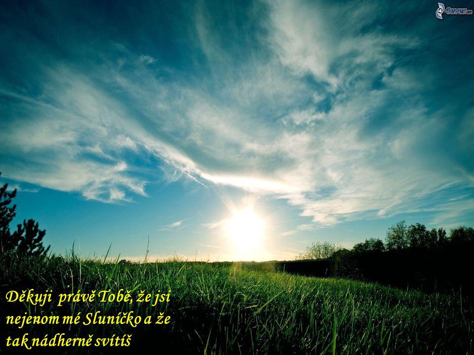 Děkuji Marušce (http://www.umarusky.com/), protože bez jejího světla bych slunce ve své duši hledal mnohem délehttp://www.umarusky.com/