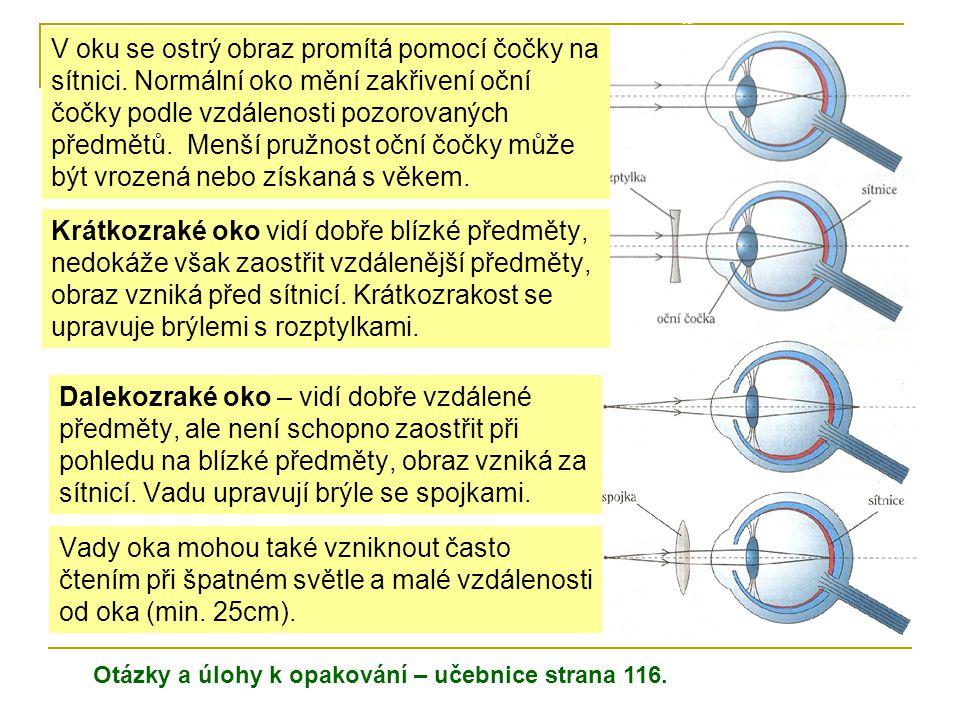 Dalekozraké oko – vidí dobře vzdálené předměty, ale není schopno zaostřit při pohledu na blízké předměty, obraz vzniká za sítnicí. Vadu upravují brýle