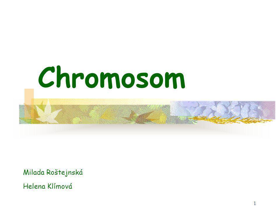 1 Chromosom Milada Roštejnská Helena Klímová