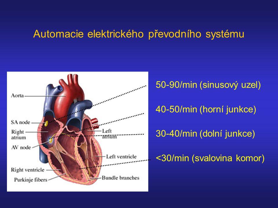 Automacie elektrického převodního systému 50-90/min (sinusový uzel) 40-50/min (horní junkce) 30-40/min (dolní junkce) <30/min (svalovina komor)