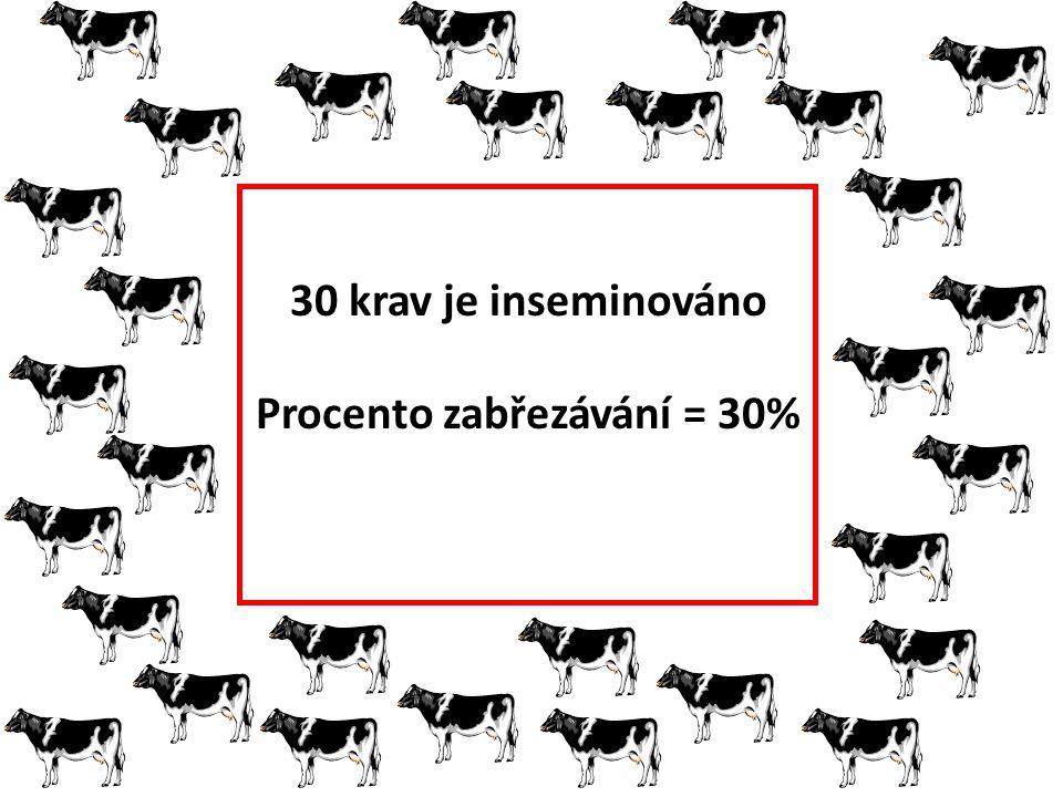 30 krav je inseminováno Procento zabřezávání = 30%