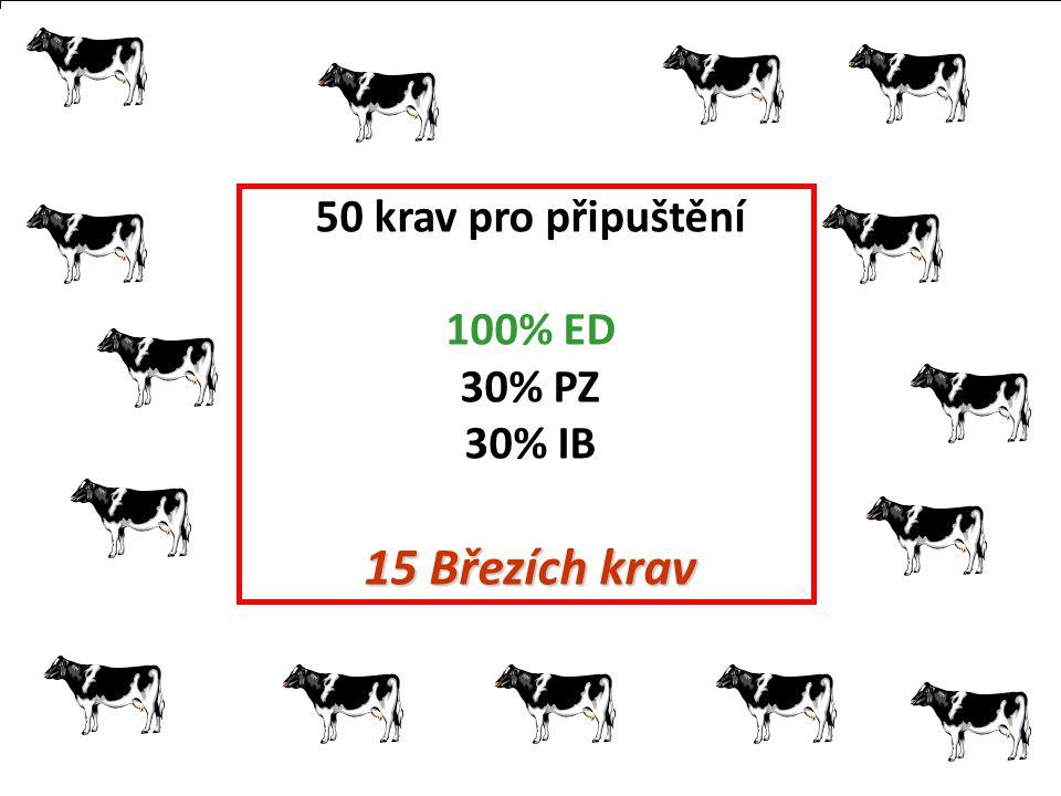 50 krav pro připuštění 100% ED 30% PZ 30% IB 15 Březích krav