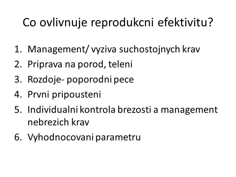Co ovlivnuje reprodukcni efektivitu? 1.Management/ vyziva suchostojnych krav 2.Priprava na porod, teleni 3.Rozdoje- poporodni pece 4.Prvni pripousteni