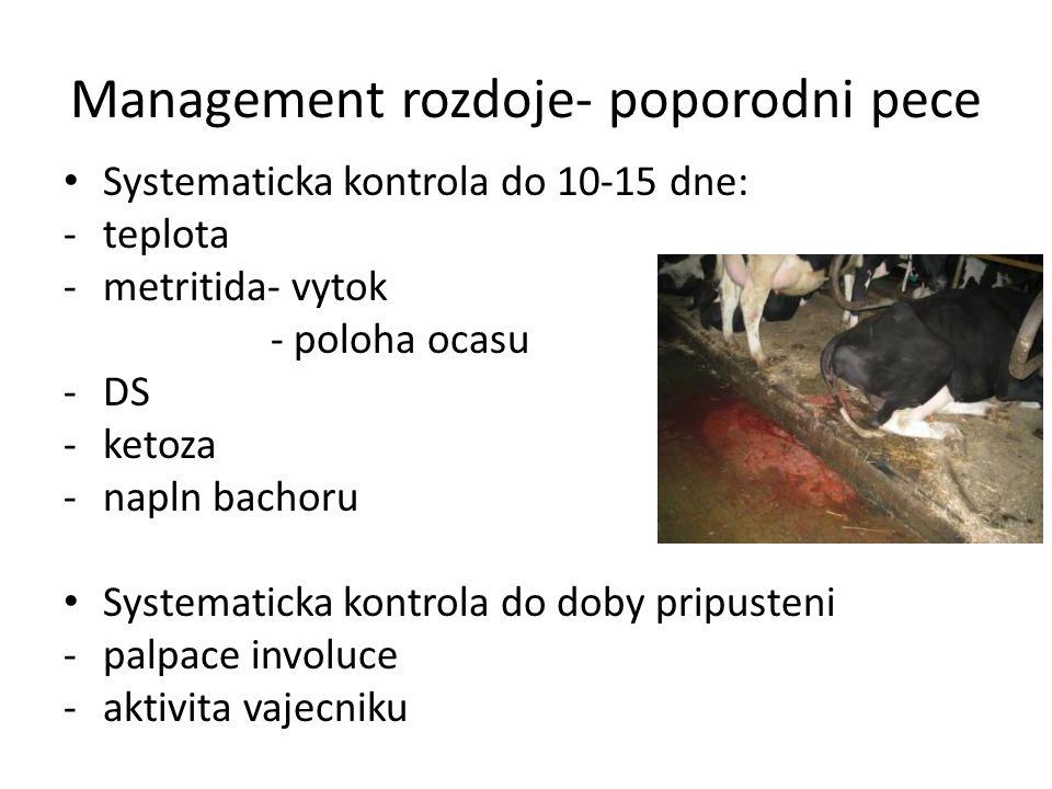 Management rozdoje- poporodni pece Systematicka kontrola do 10-15 dne: -teplota -metritida- vytok - poloha ocasu -DS -ketoza -napln bachoru Systematic