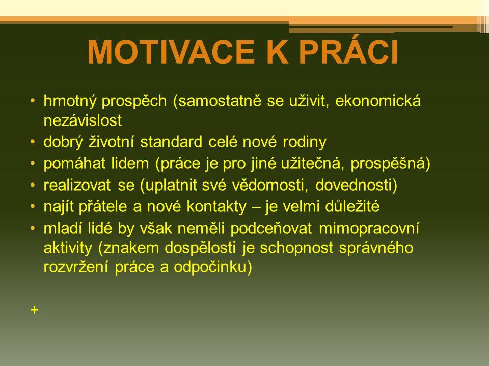 MOTIVACE K PRÁCI hmotný prospěch (samostatně se uživit, ekonomická nezávislost dobrý životní standard celé nové rodiny pomáhat lidem (práce je pro jin
