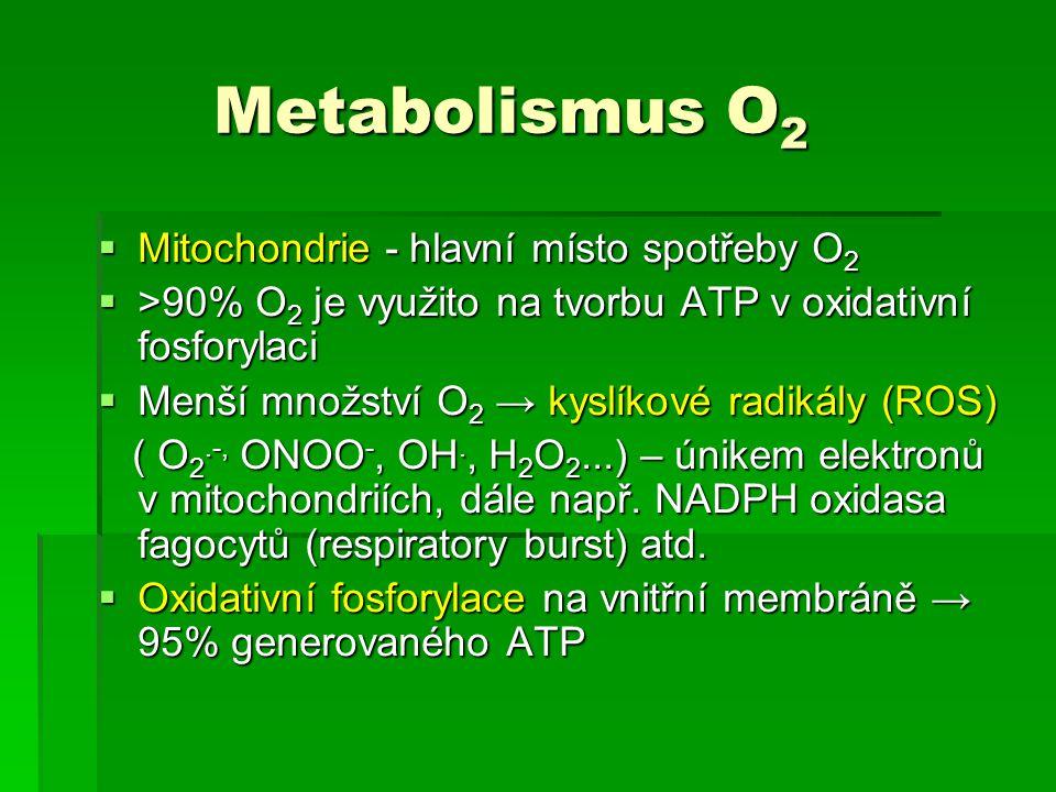 Metabolismus O 2 Metabolismus O 2  Mitochondrie - hlavní místo spotřeby O 2  >90% O 2 je využito na tvorbu ATP v oxidativní fosforylaci  Menší množ