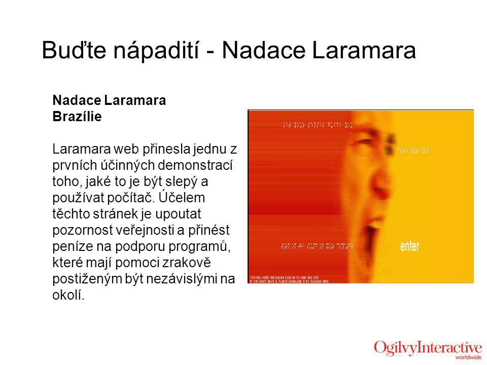 Nadace Laramara Brazílie Laramara web přinesla jednu z prvních účinných demonstrací toho, jaké to je být slepý a používat počítač.