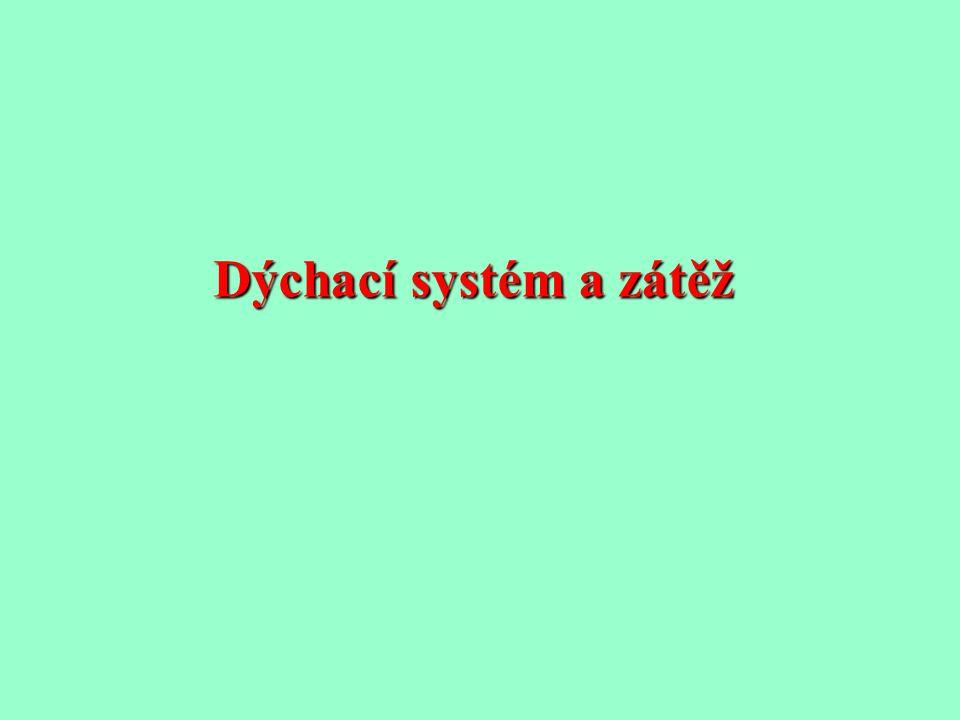 Dýchací systém a zátěž