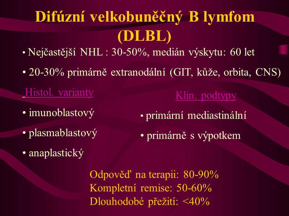 Difúzní velkobuněčný B lymfom (DLBL) Nejčastější NHL : 30-50%, medián výskytu: 60 let 20-30% primárně extranodální (GIT, kůže, orbita, CNS) Histol. va