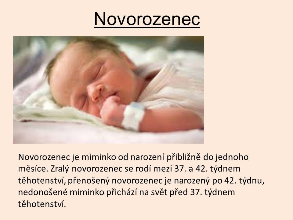 Novorozenec Novorozenec je miminko od narození přibližně do jednoho měsíce. Zralý novorozenec se rodí mezi 37. a 42. týdnem těhotenství, přenošený nov