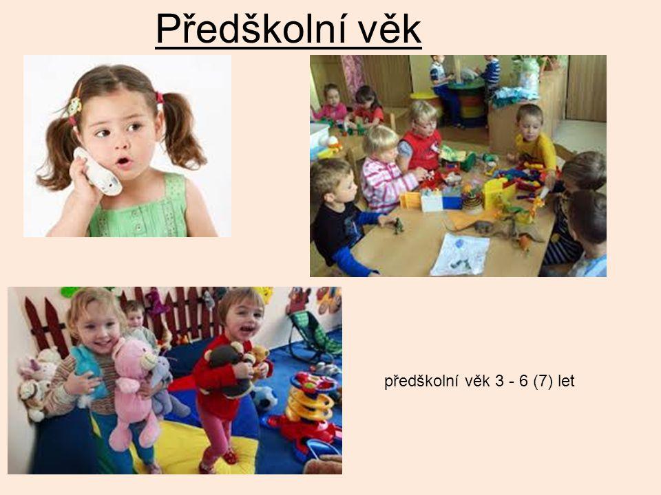 Předškolní věk předškolní věk 3 - 6 (7) let