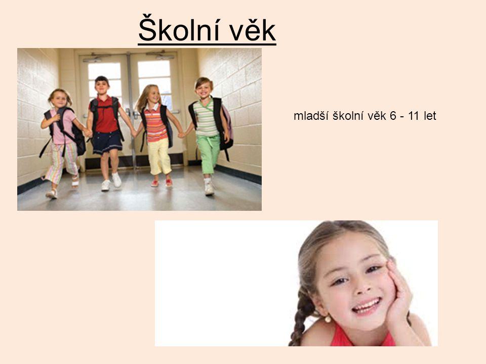 Školní věk mladší školní věk 6 - 11 let