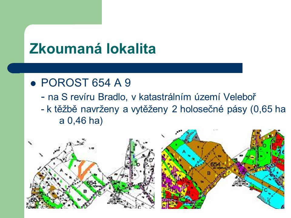 Zkoumaná lokalita POROST 654 A 9 - na S revíru Bradlo, v katastrálním území Veleboř - k těžbě navrženy a vytěženy 2 holosečné pásy (0,65 ha a 0,46 ha)