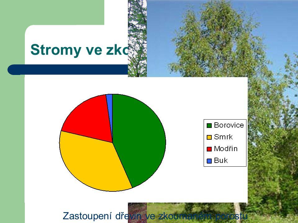 Stromy ve zkoumaném porostu Borovice lesní Smrk ztepilý Modřín opadavý Buk lesní Bříza bělokorá Zastoupení dřevin ve zkoumaném porostu