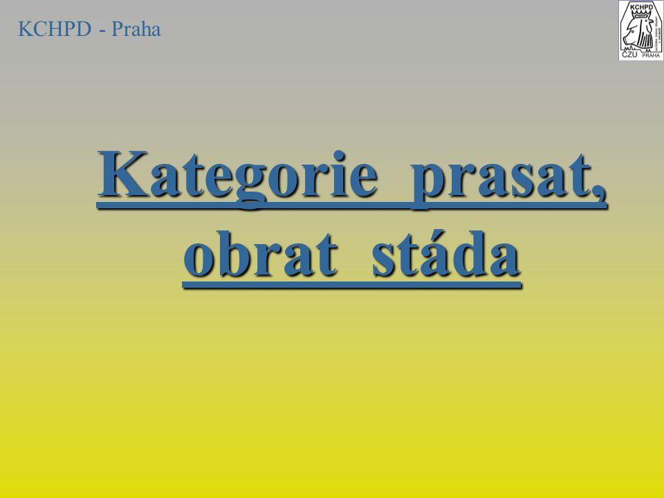 Kategorie prasat, obrat stáda KCHPD - Praha