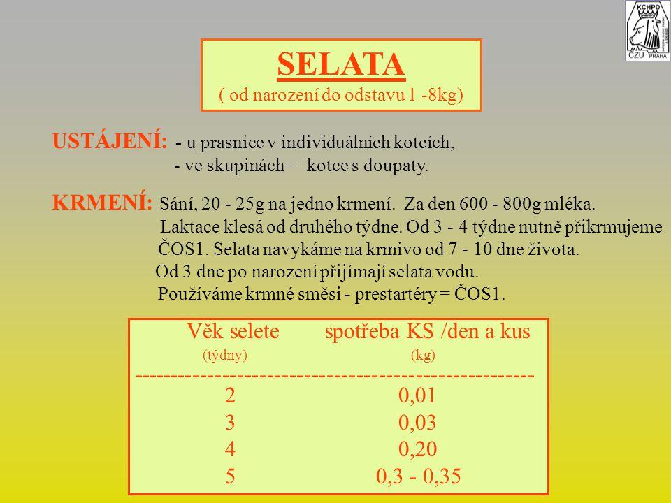 SELATA ( od narození do odstavu 1 -8kg) USTÁJENÍ: - u prasnice v individuálních kotcích, - ve skupinách = kotce s doupaty.