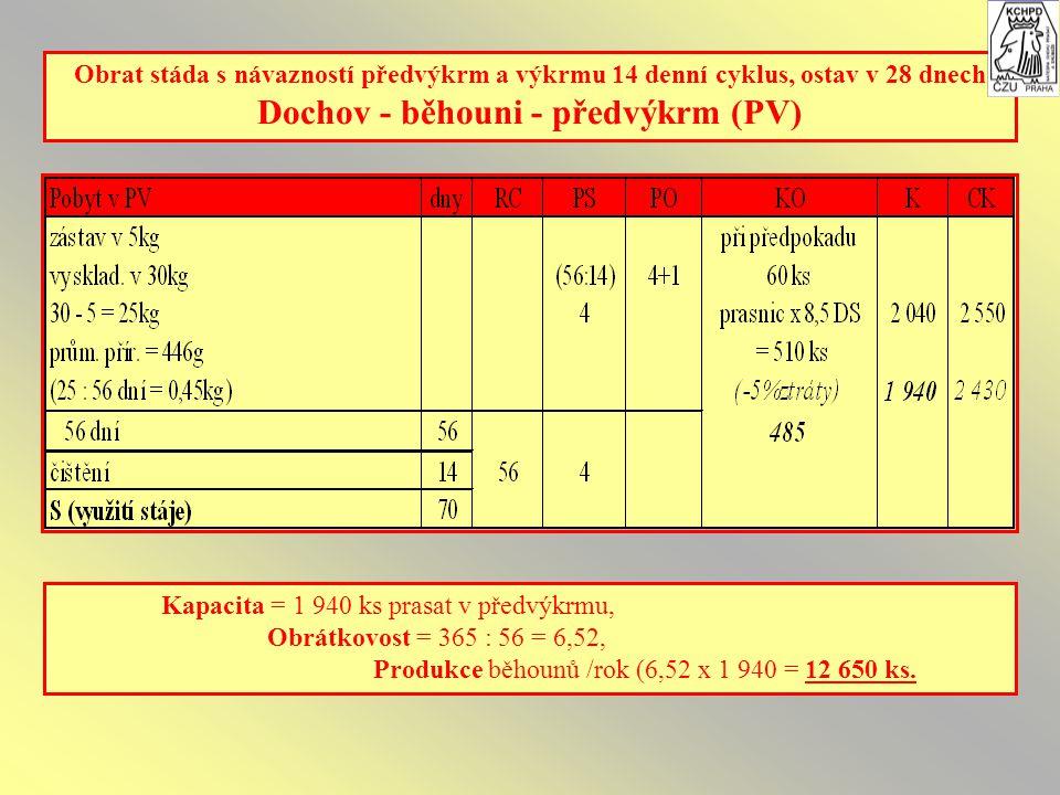 Obrat stáda s návazností předvýkrm a výkrmu 14 denní cyklus, ostav v 28 dnech Dochov - běhouni - předvýkrm (PV) Kapacita = 1 940 ks prasat v předvýkrmu, Obrátkovost = 365 : 56 = 6,52, Produkce běhounů /rok (6,52 x 1 940 = 12 650 ks.