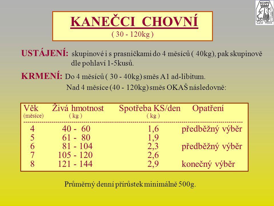 KANEČCI CHOVNÍ ( 30 - 120kg ) USTÁJENÍ: skupinové i s prasničkami do 4 měsíců ( 40kg), pak skupinově dle pohlaví 1-5kusů. KRMENÍ: Do 4 měsíců ( 30 - 4