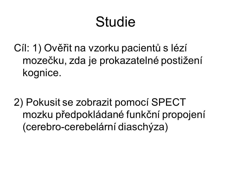 Metody -13 pacientů a 13 kontrolních subjektů (neuropsychologie).