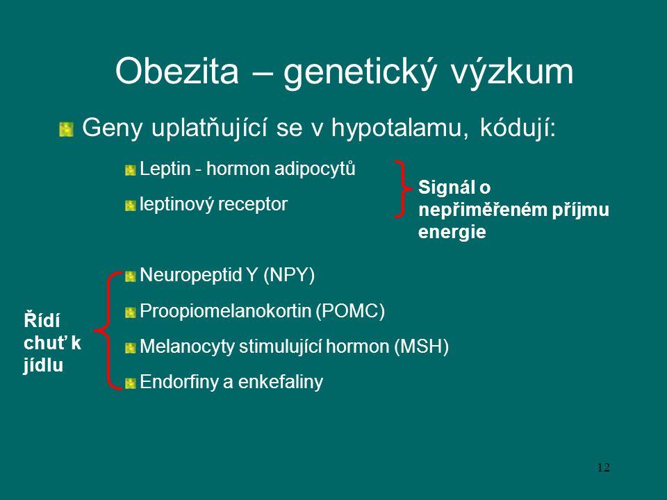 12 Obezita – genetický výzkum Geny uplatňující se v hypotalamu, kódují: Leptin - hormon adipocytů leptinový receptor Neuropeptid Y (NPY) Proopiomelano