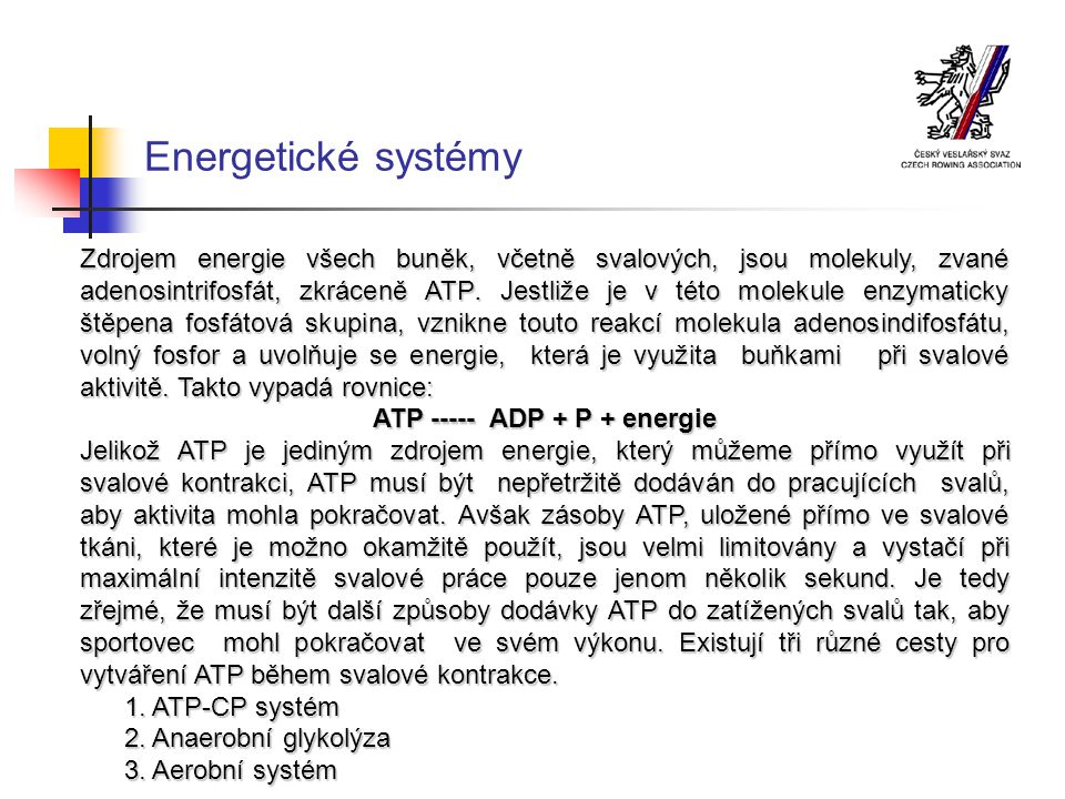 Energetické systémy Zdrojem energie všech buněk, včetně svalových, jsou molekuly, zvané adenosintrifosfát, zkráceně ATP.