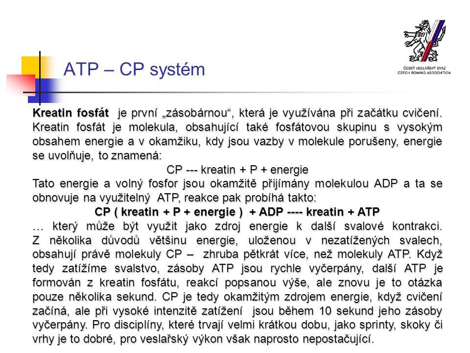 """ATP – CP systém Kreatin fosfát je první """"zásobárnou , která je využívána při začátku cvičení."""