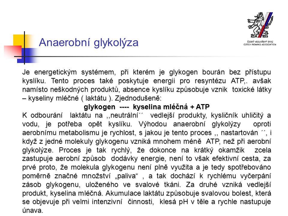 Aerobní systém Je proces, kdy je glykogen, přijatý potravou, sloučen s kyslíkem, který tělo získává z vdechovaného vzduchu, přičemž vzniká kysličník uhličitý, voda a energie, kterou je možno využít pro resyntézu ATP..Velmi zjednodušeně je možno proces popsat takto: glykogen + O2 ---- CO2 + H2O + ATP Aerobní systém zahrnuje řadu složitějších pochodů a zejména je nutná nepřetržitá dodávka kyslíku.