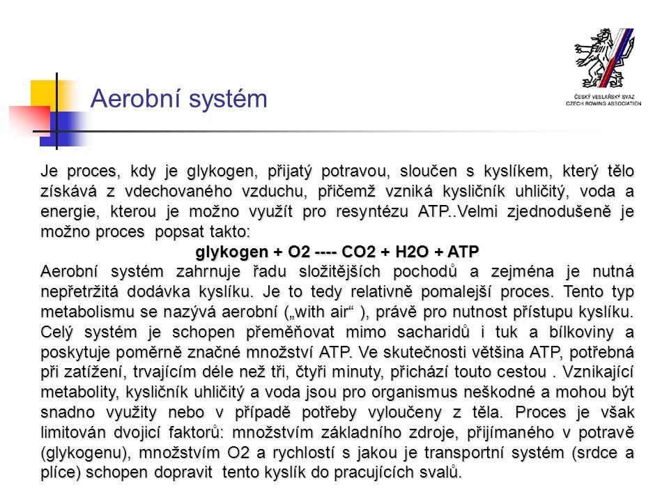 Typy metabolismu 1.ATP – CP systém ( anaerobně – alaktacidní ): rychlé rozběhnutí, trvání do deseti sekund, využitelnost zejména při rychlostních a silových disciplínách, malé množství ATP vyrobeno z molekuly CP, neškodlivé vedlejší produkty,bez přístupu kyslíku.