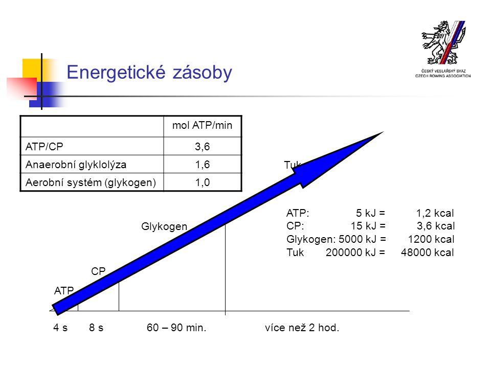 Energetické zásoby 4 s 8 s 60 – 90 min.více než 2 hod.