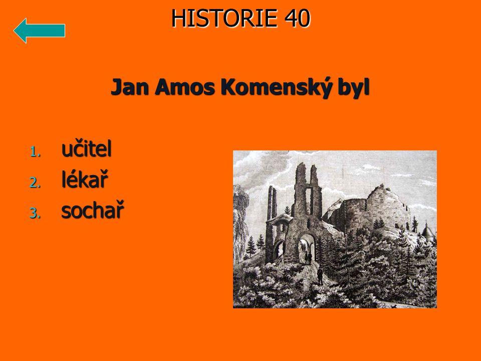 Jan Amos Komenský byl 1. učitel 2. lékař 3. sochař HISTORIE 40