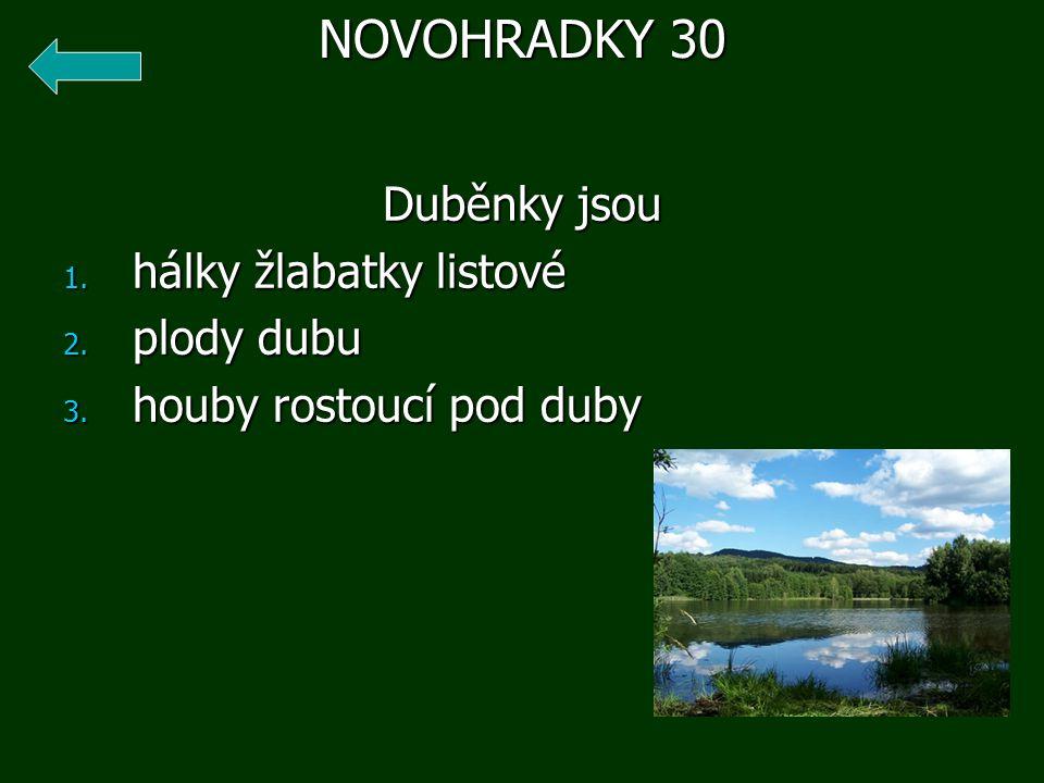 Duběnky jsou 1. hálky žlabatky listové 2. plody dubu 3. houby rostoucí pod duby NOVOHRADKY 30